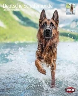 Kalender Deutsche Schäferhunde