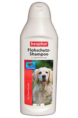 Flohschutz-Shampoo - hift bei Befall von Ungeziefer