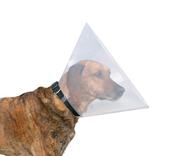 Schutzkragen - Halskrause für Hunde