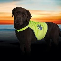 Sicherheitsweste - Warnweste für Hunde