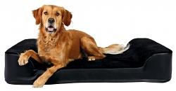 Orthopädisches Hundebett Tonio