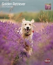 Kalender Golden Retriever