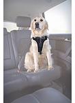 Hunde Auto Geschirr - Sicherheitsgurt