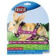 Kaninchen Geschirr & Leine
