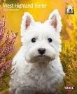Kalender West Highland Terrier
