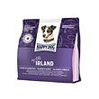 Happy Dog - My little Ireland
