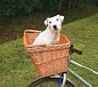 Fahrradkorb for Hunde