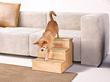 Sofatreppe für Hunde - Petstair