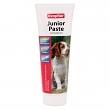 Junior Paste für Hunde Welpen