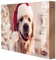 Premio Adventskalender für Hunde - Weihnachtskalender
