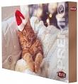 Adventskalender für Katzen - fleischhaltiger Weihnachtskalender
